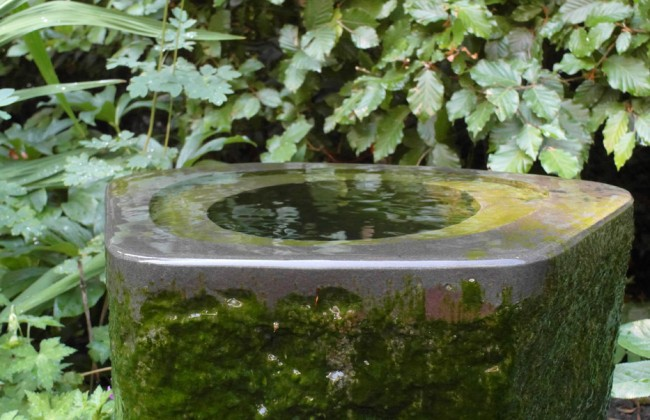 Tuinbeeld / waterobject